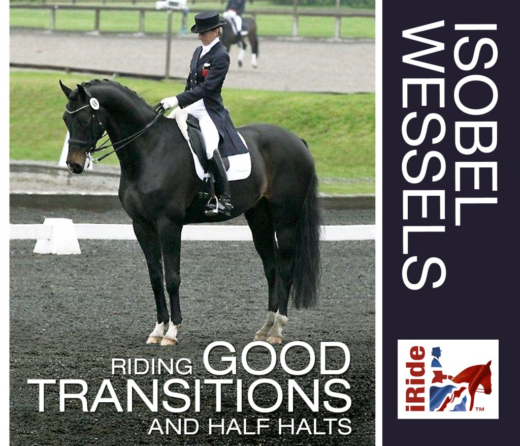 Riding Good Transitions and Half Halts (Isobel Wessels)